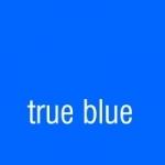 true blue webdesign